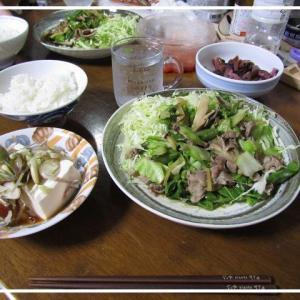 ●キャベツな 生姜焼き made by my husband.
