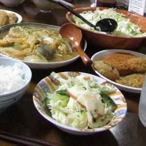 ●白ナスと玉葱の卵とじ made by my husband.