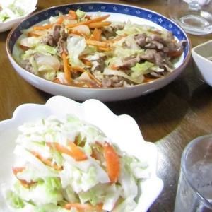 ●肉キャベニン炒め、キャニンサラダ made by my husband.
