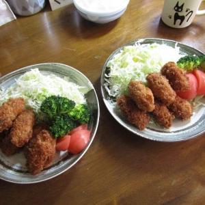 ●カキフライのお昼ご飯 旨ぇぇ~~!
