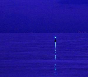 夜の飯島海岸散歩!