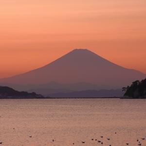 夕暮れの飯島海岸散歩!