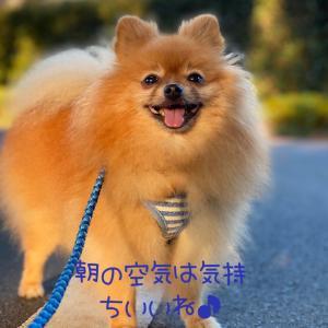 HAPPYな一日♪