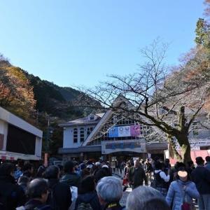 高尾山の紅葉撮影
