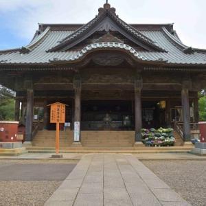 宗吾霊堂のアジサイ苑