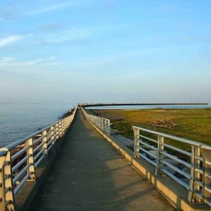 ヨットハーバー突堤ジョギング