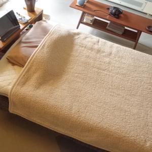 軽石はなぜお風呂に置いてあるのか、使い道を知る