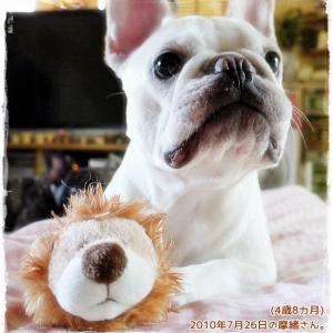 ライオン丸と摩緒さん