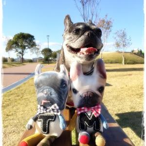 家族揃って公園散策