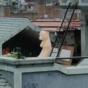 カトマンズの屋上に干される巨大ぬいぐるみ