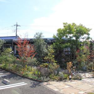 八王子市『Garden House Salute』さんでランチ \(^ω^\)( /^ω^)/ワーイ♪
