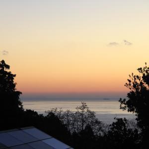 【朝ごはん食べてチェックアウト】伊豆高原『プチホテル マイカ』で過ごす忘年会の旅 U^ェ^U ダワン!