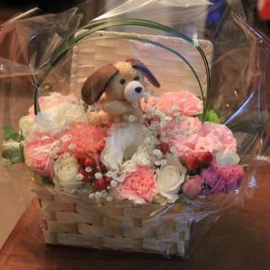 大ちゃんみたいな可愛いお花 (人∀`●)アリガトゥ