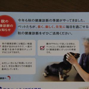 秋の健康診断パックを予約したよ 。.:*.゜☆(●´∀`●)ニコ.゜☆.。.:*.゜