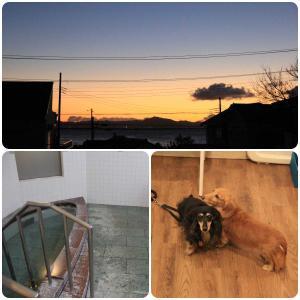 【元旦朝ごはん編】CARO FORESTA 三浦海岸ARENAで静かな年越し U^ェ^U ダワン!