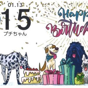 [ミ☆ HAPPY BIRTHDAY!プチ15歳 ☆彡]⌒ヾ(・ω-。)~♪