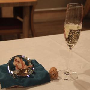【お夕食編】『CARO FORESTA 三浦海岸ARENA』で大地誕生日おめでとうの旅 U^ェ^U ダワン!