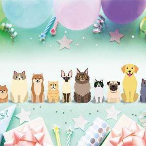 [ミ☆ HAPPY BIRTHDAY!メレ14歳 ☆彡]⌒ヾ(・ω-。)~♪