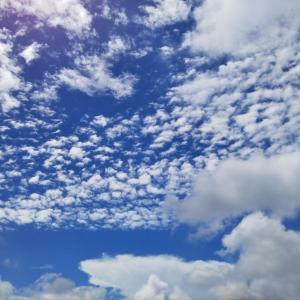 うろこ雲と羽