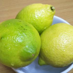 国産の檸檬