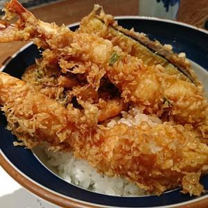 どんぶり三昧 ~お肉と魚、どっちがお好き?~