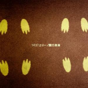 黄色いねずみ号の旅 4