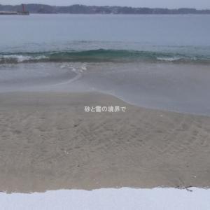 砂浜のかわいいルアー