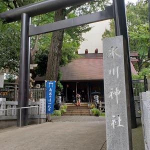 白金Cちゃんと高円寺~西荻窪食べある記②【高円寺氷川神社】