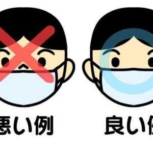 広がる「不織布マスク着用のお長い」と明治神宮の初詣(遅っ!)