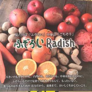 大満足の「ふぞろい野菜お試しセット」をネットで購入…新鮮・親切・便利