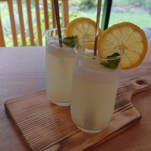 ワゴン売りのレモンはとっても美味しいものに変身