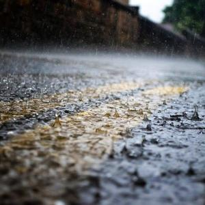 雨ギリギリだった除草剤散布の結果は