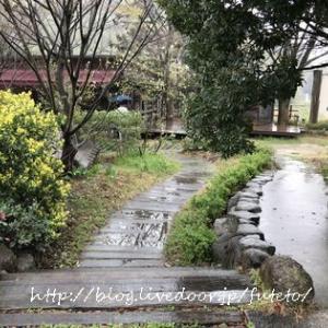 讃岐丸亀の素敵なカフェKITOKURAS「木と暮らす」へ