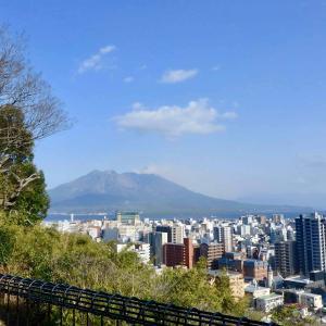 城山ホテル鹿児島からの眺め*桜島と鹿児島市街地&イルミネーション♪ 猫の日*ミミ♬