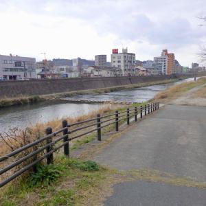 甲突川*玉江橋付近〜コサギ1羽 雲に隠れた桜島がうっすら遠くに見えました♬