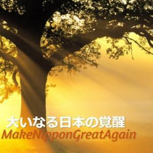 わたしたちは神に属する者です。#WWG1WGA #MakeNipponGreatAgain