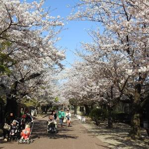 神戸市立王子動物園散策