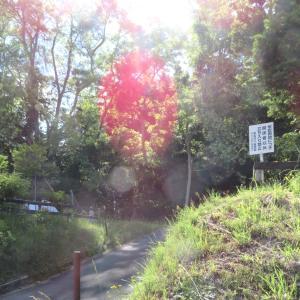 西岡から澄川散歩