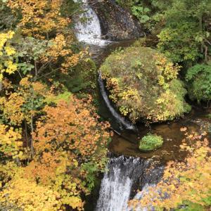 豊平峡ダム出陣②〜これを見るためだけに歩く九段の滝〜