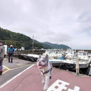 琵琶湖唯一の有人島、沖島