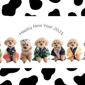 Happy NewYear2021!今日は何の日?