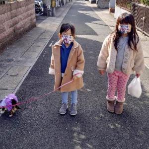 あみん、お散歩デビュー^^