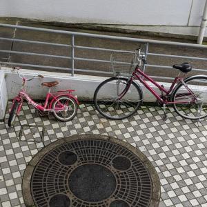 可愛い幼児の自転車が