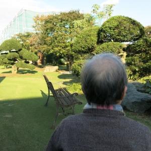 庭園散策。