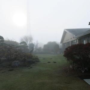 霧から晴天。