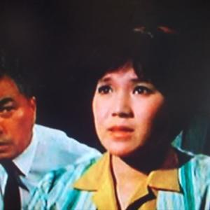 火曜日の女シリーズ 「花は見ていた」 (1971年)
