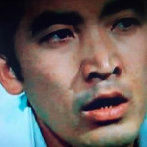 「特別機動捜査隊」 第787話 『ある誘惑の秘密』