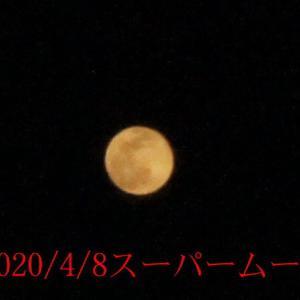4/8 Super moon
