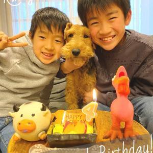 土屋ラスティ、4才の誕生日♪