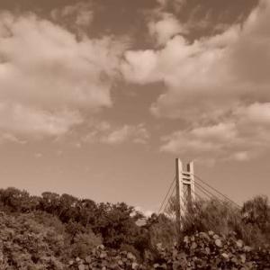 山田池公園sepia (5)